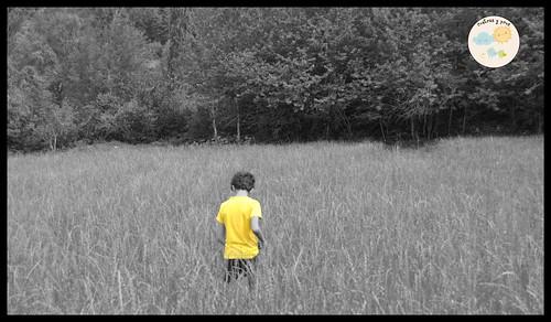Carta abierta a mi hijo Mediano 8 años