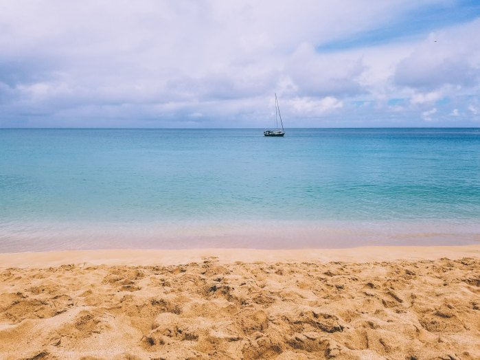 Oahu Beach Guide - A Perogy and Panda Hawaii Travel Guide - Waimea Bay