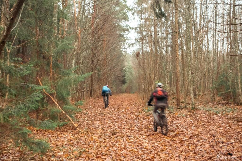 ВелоПокатушка Северное Полесье 201