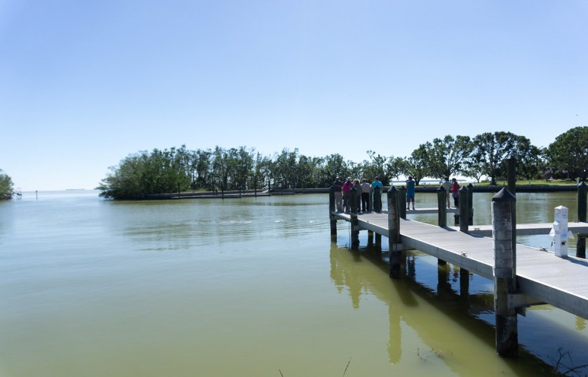 Visitors in Flamingo Watch Manatees in the Florida Bay Side of the Flamingo Marina, Everglades National Park, Nov. 25, 2017