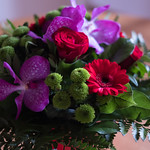 Bouquet de fête