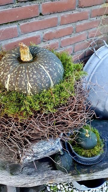 Tuin decoratie herfst