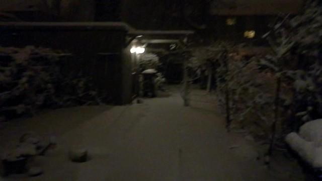 Jardín nevado y empanada de atún