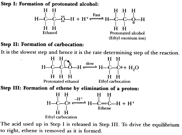 Important Questions for CBSE Class 12 Chemistry - Alcohols, Phenols