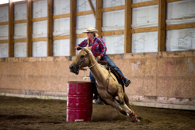 A Tough Calling, an incredible journey, Gorilla Glass, cowgirl, the south dakota cowgirl, barrel horse, barrel racing