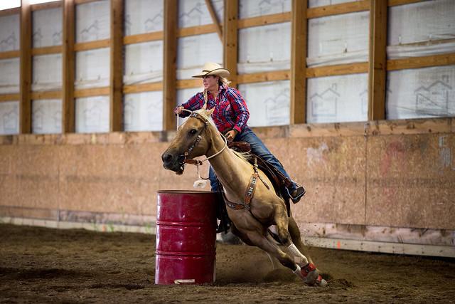 A Tough Calling, an incredible journey, Gorilla Glass, cowgirl, the south dakota cowgirl, barrel horse, barrel racing