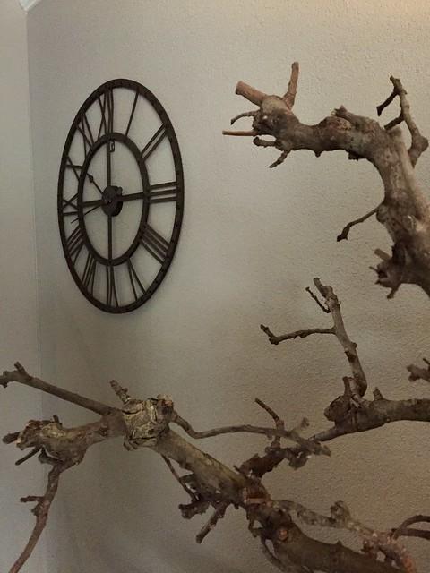 Grote klok druivenstronk decoratietakken