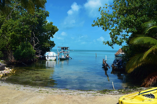 Caye Caulker Belize - swimming in the sea