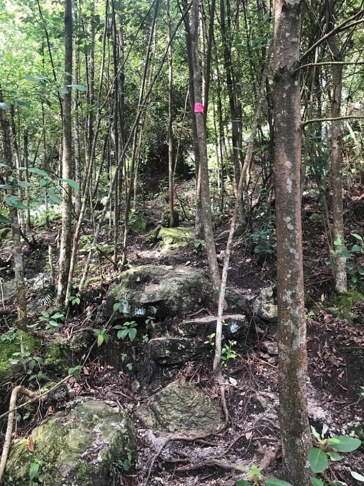 Gombak Selangor Quartz Ridge