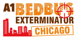How To Properly Hire A Bed Bug Professional https://t.co/IDH4zccUz9………… https://t.co/QM2Le9EeMi…………………………… https://t.co/NvXzWW3h3U