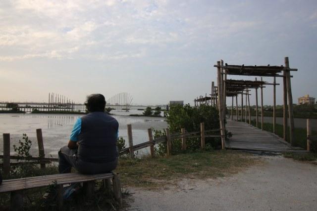口湖成龍濕地 (1)