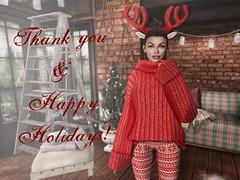 Thank you & Happy Holidays!
