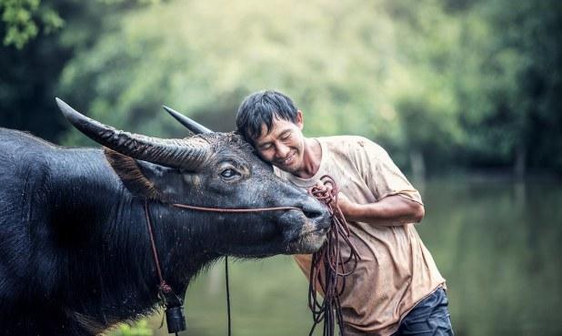 Visitas en Tailandia
