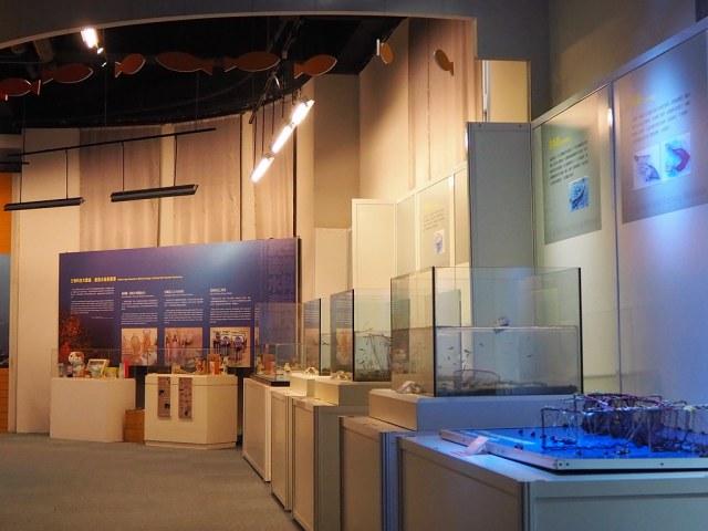 陽明海洋文化藝術館 (12)
