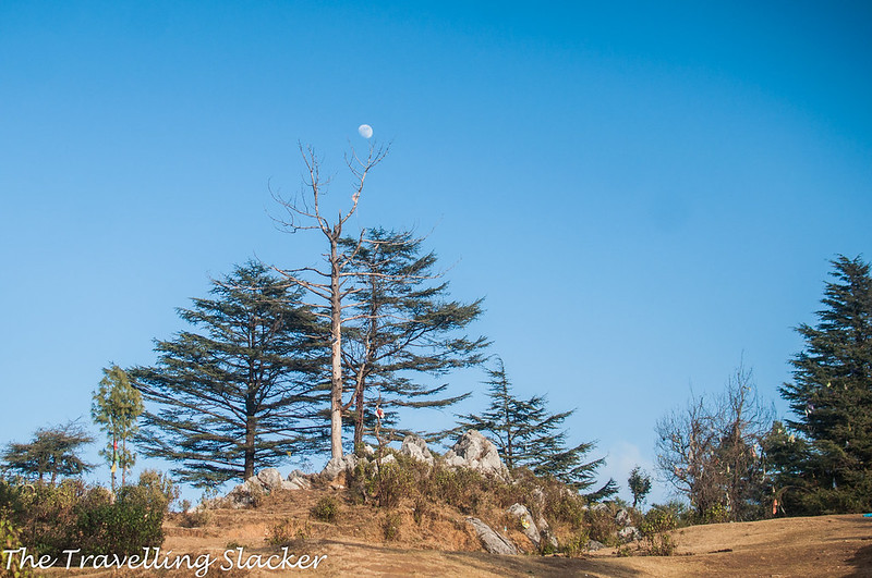 Mussoorie Winter (40)