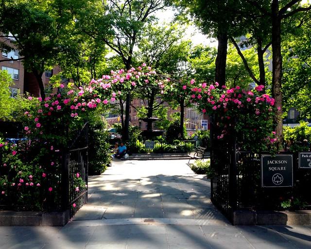 Jackson Square Park