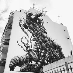 The #master himself #roa #streetart #visitTenerife #wanderlust #tenerife #canaryisland #travel #travelgram #guardiantravelsnaps #islascanarias #spain #ig_europe #instatravel #vsco #vscocam #bbctravel #tourism #shotoniphone #explore #lovecanaryisland #tene