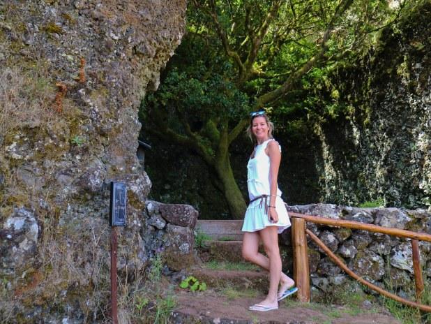 Visitar árbol Garoé en El Hierro