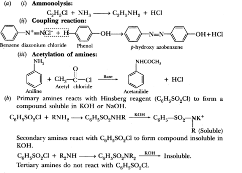 Important Questions for CBSE Class 12 Chemistry - Organic