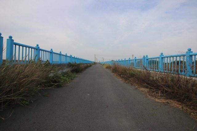 口湖成龍濕地 (14)
