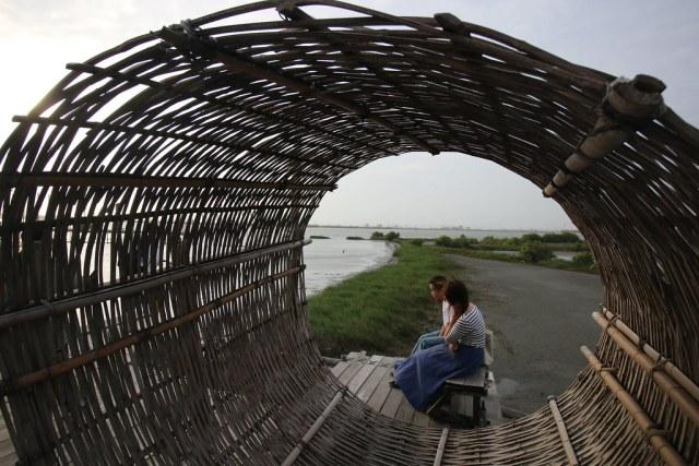口湖成龍濕地 (2)