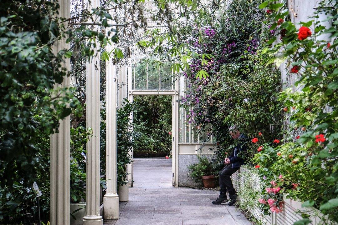 National Botanic Gardens (Dublino)