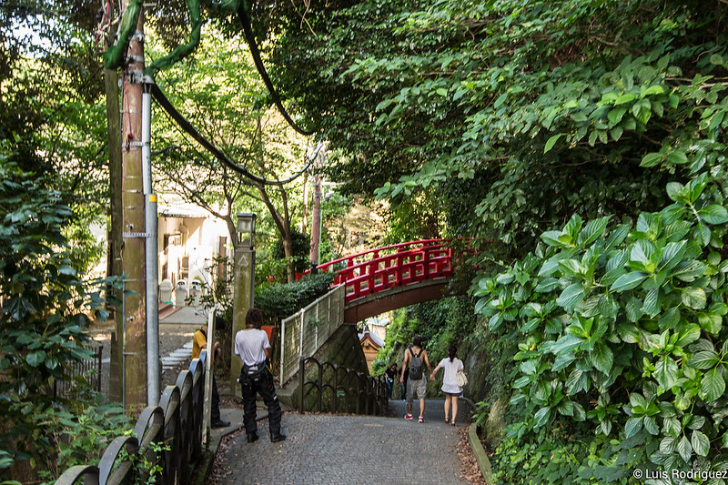 Excursion-Enoshima-Japon-82