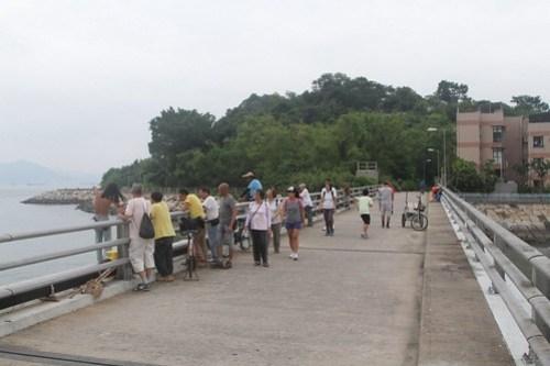 Fishing on the bridge between Peng Chau and Tai Lei