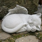 Angel Cat square