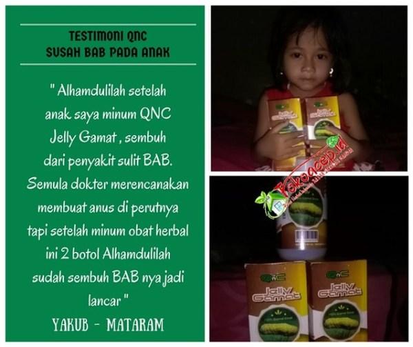 testimoni obat sembelit pada bayi qnc jelly gamat