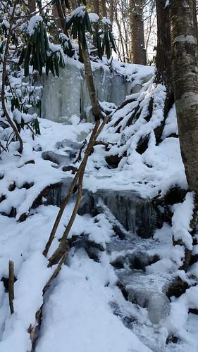 2018-01-19_Blackwater_Falls_55