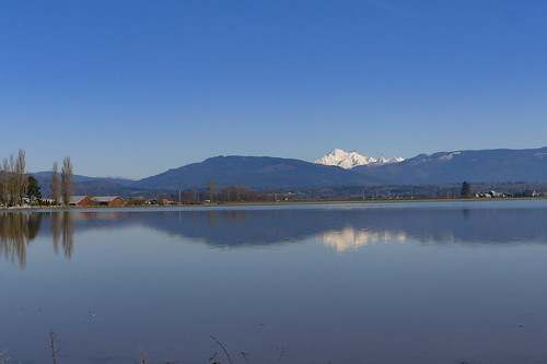 Mount Baker Reflected-001
