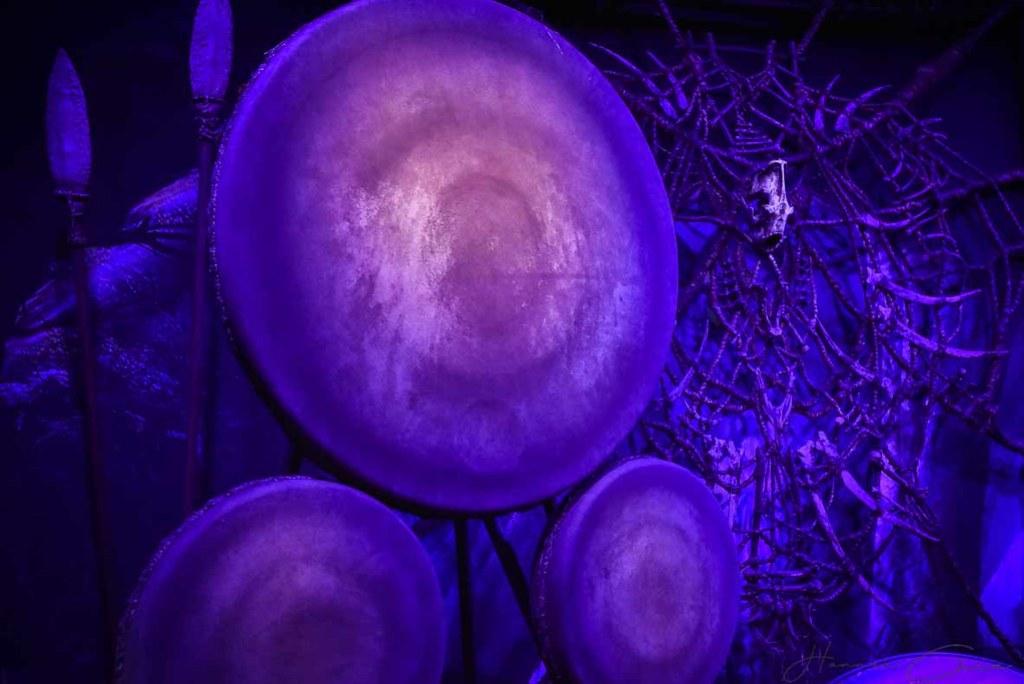 Avatar- Discover Pandora (30 of 71)