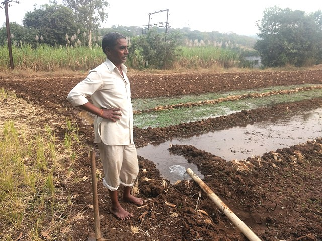 No Seed For Farmers In Andhra-Governments Blame Each Other Wasting Time