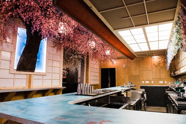 Cherry Blossom PUB-16