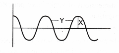 ncert-class-9-science-lab-manual-velocity-of-a-pulse-in-slinky-11