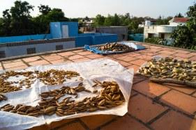 Indien India lust-4-life lustforlife Blog Waisenhaus Orphanage.jpg (28)