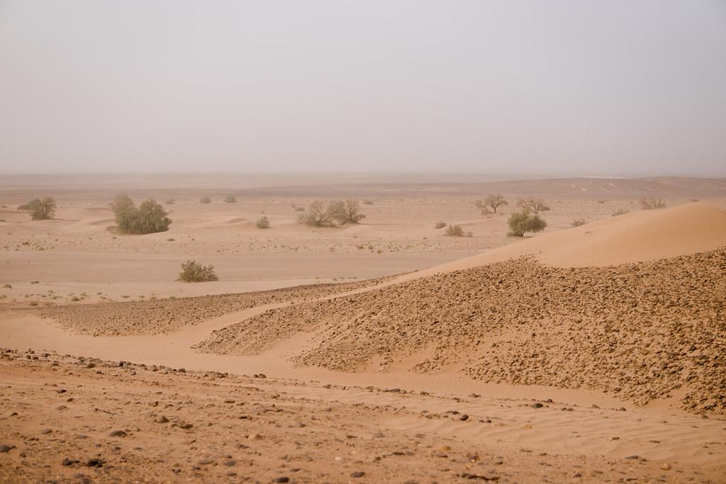 Upon entering the Sahara