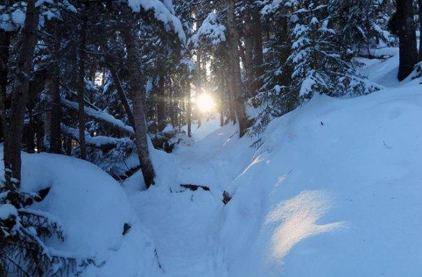 Mt Tecumseh Winter Hike Valley Climb