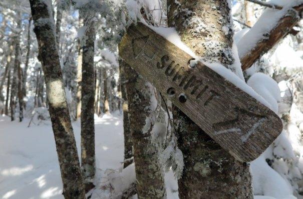 Mt. Tecumseh Winter Hike Trail Split