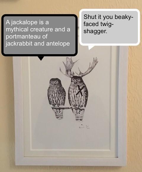 Beaky Faced Twig Shagger