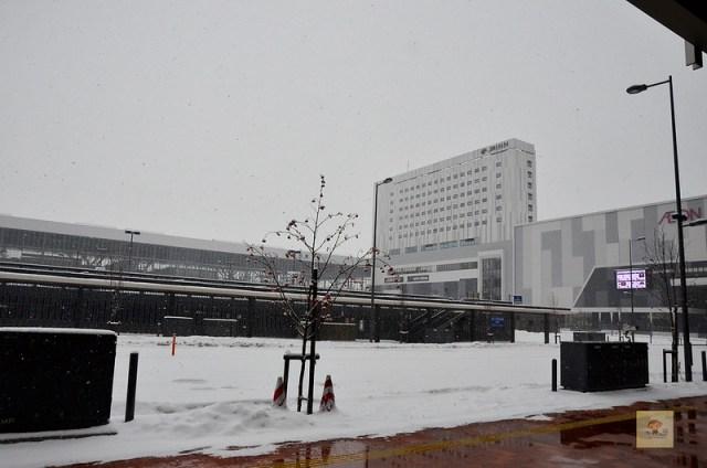 Route Inn飯店旭川站前-58