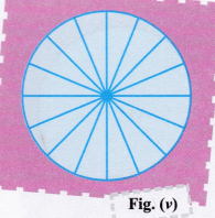 ncert-class-10-maths-lab-manual-area-circle-paper-cutting-pasting-method-8
