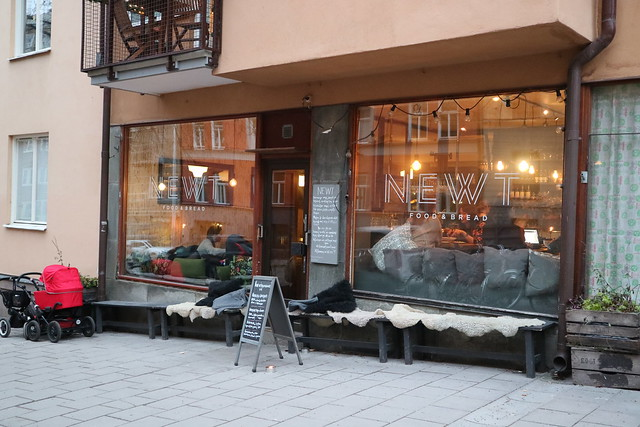 Café Newt (1)