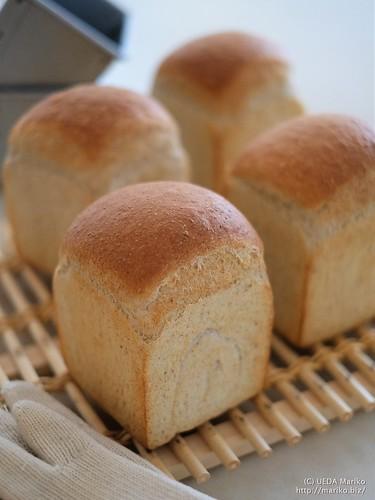 ホップ酵母の食パン 20170615-22-DSCT4021 (2)