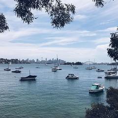 #great #city #views #today @sydney @visitnsw @australia #ilovesydney #sydney #summer #newsouthwales #wanderlust #travel #australia #seeaustralia #sydneyfolk #australiagram #sydneytravel #travel #guardiantravelsnaps #guardiancities #lonelyplanet #sydneylif