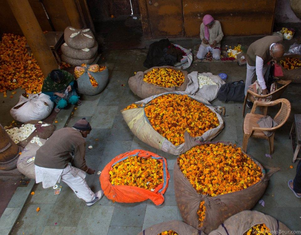 Trip to flower market