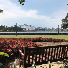 #mondayafternoon #relaxing with a #view #sydneyoperahouse @sydneyoperahouse #botanicgardens @sydney @visitnsw @australia #ilovesydney #sydney #summer #newsouthwales #wanderlust #travel #australia #seeaustralia #sydneyfolk #australiagram #sydneytravel #tra