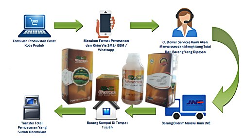 Informasi Penting Tentang Cara Pemesanan QnC Jelly Gamat Pada Kami