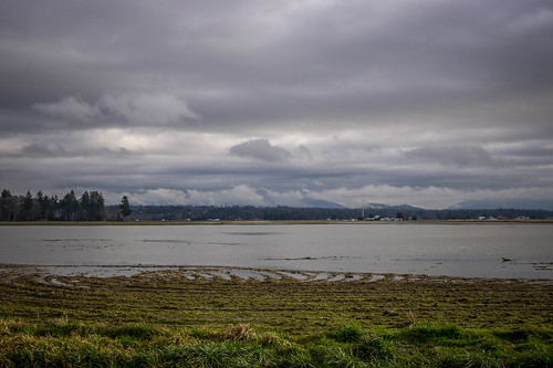 Skagit Valley Flooded Fields-009